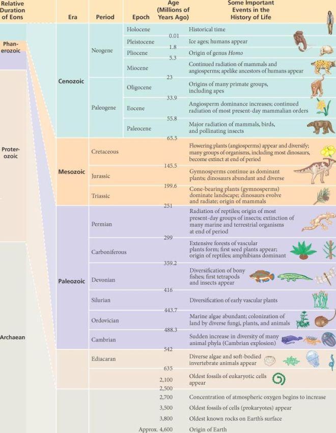 25_t01-geologicrecord-l